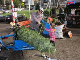 Christmas Tree Baler Used by Christmasfeats Hum Of The City