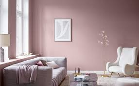 premium farben für wände mit charakter alpina farben