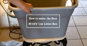 best cat litter boxes diy to keep litter from spreading all the house you