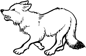 Elegant Fox Coloring Pages 21 For Seasonal Colouring With