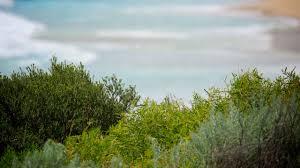 100 Luxury Accommodation Yallingup Top 10 Beach Hotels Resorts In 2019
