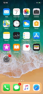 to take a screenshot on Apple iPhone X