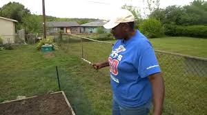 Backyard Garden: Planting Potatoes - YouTube Texas Garden The Fervent Gardener How Many Potatoes Per Plant Having A Good Harvest Dec 2017 To Grow Your Own Backyard 17 Best Images About Big Green Egg On Pinterest Pork Grilled Red Party Tuned Up Want Organic In Just 35 Vegan Mashed Potatoes Triple Mash Mashed Pumpkin Cinnamon Bacon Sweet Gardening Seminole Pumpkins And Sweet From My Backyard Potato Salad Recipe Taste Of Home