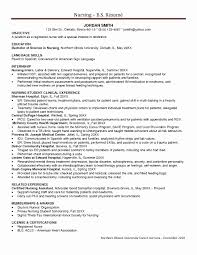 Experience Certificate Sample Storekeeper New Stu Stunning Cv Template Contemporary Example Resume
