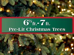 Christmas Tree 75 Ft by Pre Lit Artificial Christmas Trees Long Island Ny Queens 75