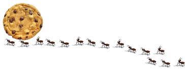 Line Ants Clipart