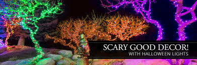 Halloween Pathway Lights Stakes by Halloween Lights Yard Envy