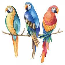 wohnzimmer aquarell papageien als wandtattoo dschungel deko