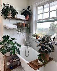 pflanzen für das badezimmer machen es zu einer grünen oase