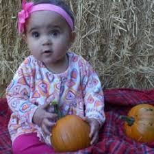 Pumpkin Patch Denver Pa by Papa U0027s Pumpkin Patch Temp Closed 12 Photos U0026 10 Reviews