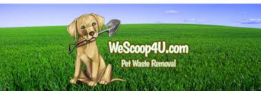 Pet Waste Removal Service Dog Poop Clean Up Fort Wayne New Haven ... Keep Odors Locked Inside With The Poovault Best 25 Dog Run Yard Ideas On Pinterest Backyard Potty Wichita Kansas Pooper Scooper Dog Poop Cleanup Pet Pooper Scoop Scooper Service Waste Removal Doodycalls Doodyfree Removalpooper 718dogpoop Outdoor Poop Garbage Can This Is Where The Goes 10 Tips To Remove Angies List Top Scoopers Reviewed In 2017 Backyards Wonderful 1000 Ideas About Backyard Basketball Court Station Bag Dispenser I Could Totally Diy This For A