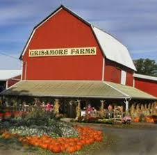 Apple Pumpkin Picking Syracuse Ny by Apple Picking Is Great Fun In The Central New York Region