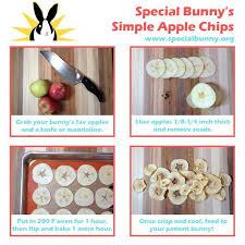 Can Rabbits Eat Roasted Pumpkin Seeds by Best 25 Rabbit Treats Ideas On Pinterest Rabbit Food Homemade