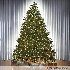Pre Lit Noble Fir Christmas Tree Full Led Worlds Best 75 Ft