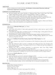Yahoo Resume Template Job Free Sample