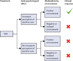A Translational Innovation Forum Ppt The Lancet Psychiatry Commission On Psychological Treatments