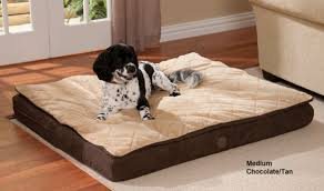 k h feather top bed orthopedic dog beds