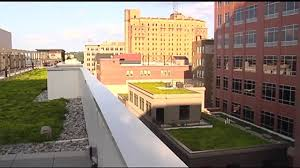 Emmaus Halloween Parade Route by What U0027s Up With Those Green Roofs In Allentown Wfmz