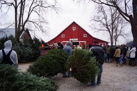 Ergle Christmas Tree Farm by Christmas Tree Farm 2
