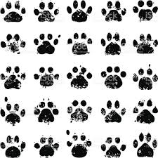 cat paw prints cat paw prints stock vector 165961327 istock