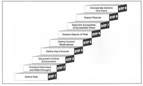 Dynamic Value Annual Financial Risk Risk Assessment Process Clir