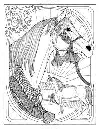 Wonderful World Of Horses Troubador Color And Story Albu Rita Warner Amazon
