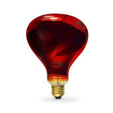 Infratech Heat Lamp Bulb by 88 Best Infrared Light Therapy Images On Pinterest Saunas Light