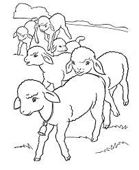 School Of Baby Lamb Coloring Page