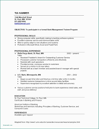 Information Technology Test Manager Resume Sample Retail Elegant 35 Concepts Customer Service