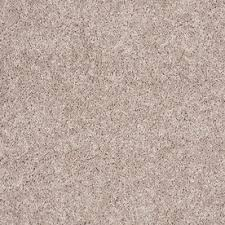 a color when replacing carpets in a home to sell stainmaster