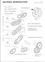 Microbiology Flipbook Fresh Coloring Book