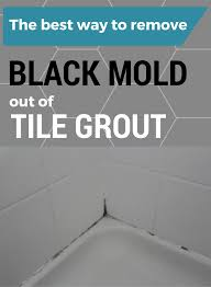 the best way to remove black mold out of tile grout cleaning