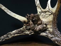 Moose Shed Antler Forums by Moose Antler Antlercarver Com