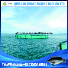 Decorative Lobster Traps Large by Floating Fish Trap Floating Fish Trap Suppliers And Manufacturers