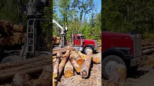 Self Loader Logging Truck. Firewood For Sale! Puget Sound Washington ... China Wood Transport For Forest Logtimber Truck Trailers Sale Self Loader Log For Best Resource Mounts Bucket Of The Future All Access Equipment 6x4 Howo Sinotruk Selfloader 20ft Container Trailer Sidelifter Logging Image American Lands Washington Company Llc 21410 Se 248th Forestry Maine Financial Group Tow Truck 2015 Serco 160 Spokane Wa 8537902 Petersen Industries Lightning Grapple Trucks Loading Concrete Mixer Available Resale In Raipur Argo