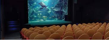 business travel aquarium la rochelle