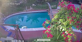1080p Security Cameras Demo From LA Security Cameras! | Security ... Amazoncom Cloud Mountain 7 Piece Patio Pe Rattan Wicker I Saved Some Kids From Hurting Themselves In My Backyard Outdoor Cctv Camera Infrared Surveillance Dad Sets Up Security Captures Rare Black Coyotewolf Mailbox Takedown At House On Security Camera Youtube New 5 Megapixel Backyard With 8aa Batteries The Operating On Roofing House Bird Vs Netgear Arlo Pro Wireless System Review Easy Cameras For Business West Palm Beach Agent Nest Shares Videos Of Crazy Scenes Caught By Its Home Bbg Services