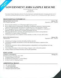Sample Resume Government Project Manager Templates Job Template 2 Examp