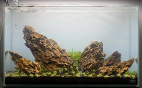 Aquascape Set-up | Step By Step | ADA 60p - YouTube How To Set Up An African Cichlid Tank Step By Guide Youtube Aquascaping The Art Of The Planted Aquarium 2013 Nano Pt1 Best 25 Ideas On Pinterest Httpwwwrebellcomimagesaquascaping 430 Best Freshwater Aqua Scape Images Aquascape Equipment Setup Ideas Cool Up 17 About Fish Process 4ft Cave Ridgeline Aquascape A Planted Tank Hidden Forest New Directly After Setting When Dreams Come True