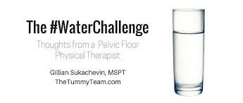 Hab It Pelvic Floor Youtube by The Drinking Challenge Thoughts From A Pelvic Floor Pt The Tummy