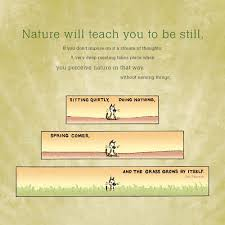 Guardians Of Being 2012 Wall Calendar Eckhart Tolle Patrick McDonnell 9781602374720 Amazon Books