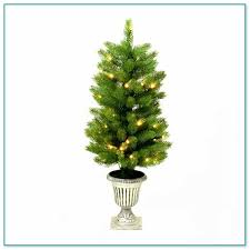 Slim Pre Lit Christmas Trees by Skinny Pre Lit Christmas Trees 2
