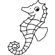 Seahorse Coloring Pages 2