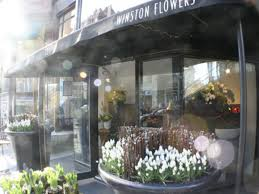 Christmas Tree Shop No Dartmouth Ma by Shop Boston U0027s Best Blooms At These 13 Standout Florists