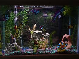 Spongebob Aquarium Decor Set by Best 25 Goldfish Aquarium Ideas On Pinterest Neon Knee Socks