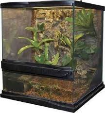 Extra Large Aquarium Decorations by Zoo Med Extra Large Terrarium 18x18x24 Sd X No Shipping Store Pickup