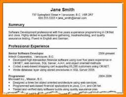 Career Overview Examples Summary Resume Sample Statement For With