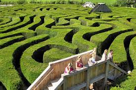 10 Most Fascinating Mazes Oddee