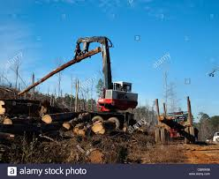 A Machine Loads A Logging Truck At A Timber Sale Stock Photo ... Recent Customer Purchases Kenworth W900a Cars For Sale 2017 Kenworth Australia Sitzman Equipment Sales Llc 1963 Peterbilt 351 Log Truck Texas Center Towing Wikipedia Peterbilt Truck Finance Heavy Vehicle Finance Australia 1989 Western Star 4964f Grapple Trucks Sale Tristate Forestry Www Used Volvo Fh16 750 Logging Trucks Year 2012 Price 74986 China North Benz Beiben Logging 6x4 Hot Photos A Machine Loads A Truck At Timber Stock Photo