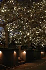 Holiday Lights Utilizing LED Indoor Outdoor Commercial Christmas